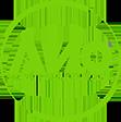 Академия Информационных Систем (АИС)